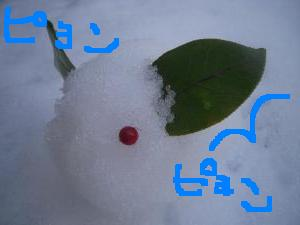雪うさぎ3 130115230940