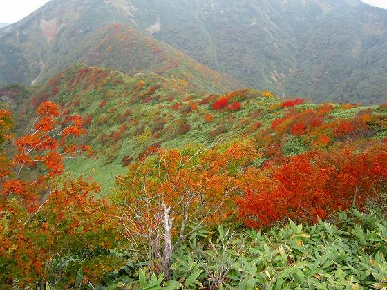 笠ケ岳への稜線