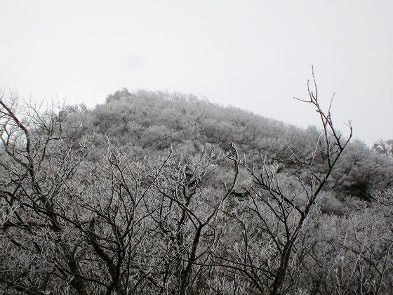 霧氷の釈迦ケ岳北面(9時頃)