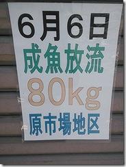 NCM_0005