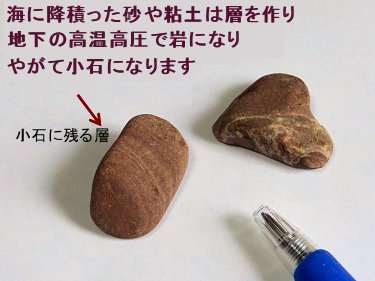 積もった粘土の層がやがて石にREVdownsize