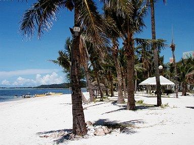 サンゴのかけらで出来た砂浜は真っ白ですdownsize