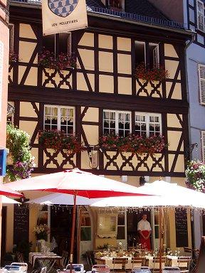 赤と白の美しいコントラスト花のレストランdownsize