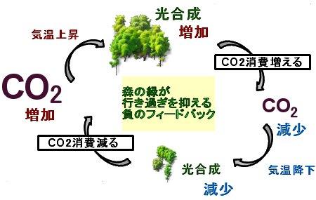 森の緑の負のフィードバック