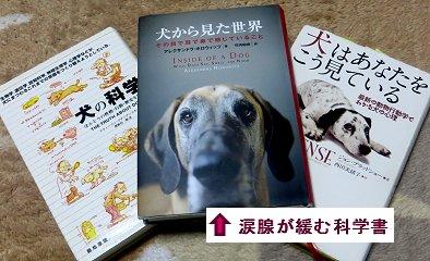 3冊のワンちゃんの本downsize