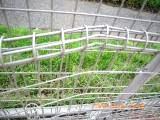 フェンス (2)
