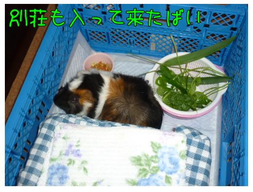 taikibasyo3.png