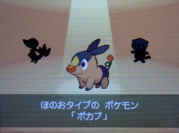 ポケモンBW2-004ポカブ★