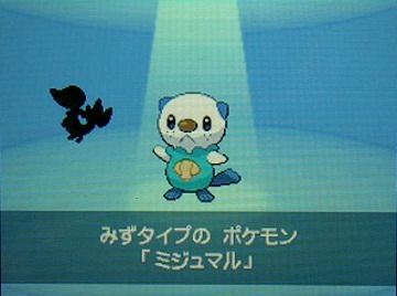 ポケモンBW2-006ミジュマル★