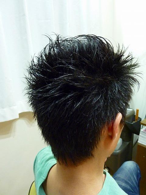 s-P1100537.jpg