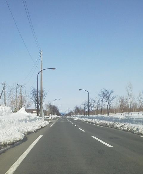 雪のない車道
