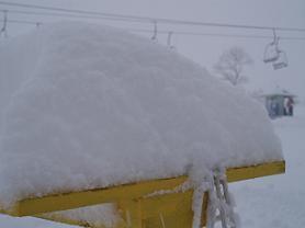 2013ハチ雪