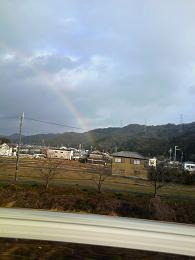 2013ハチ虹