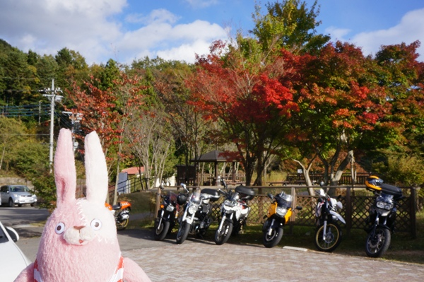 もみじ谷バイク写真