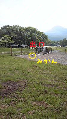 Image13581.jpg