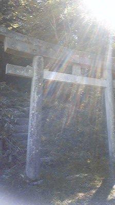 Image14571.jpg
