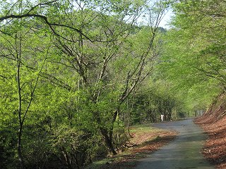 20120503-0506生杉 022
