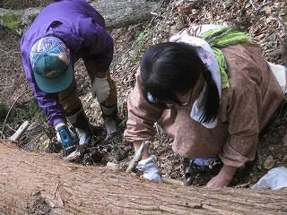20120519-20生杉 028