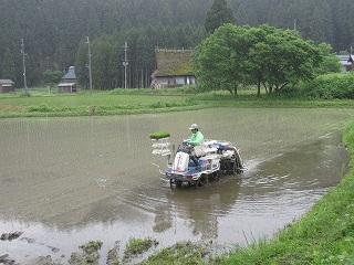 20120608-09生杉 006