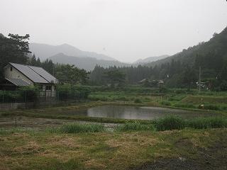 20120630-0701生杉 005