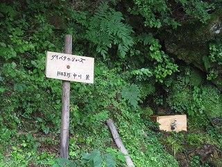20120811-19生杉 003