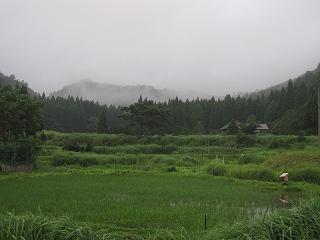 20120811-19生杉 007