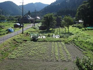 20120825-26生杉 005