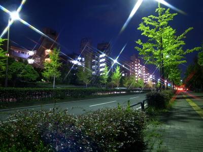 20120818_06.jpg