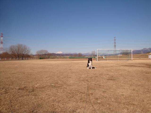 20130305_10.jpg