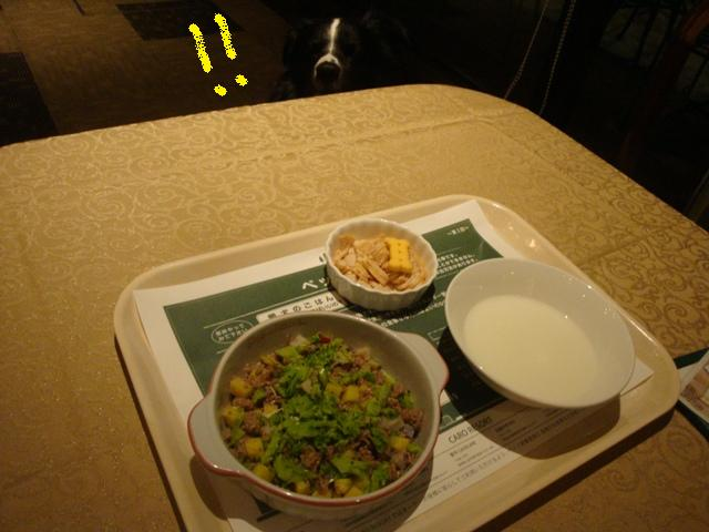 hotel_dinner06.jpg