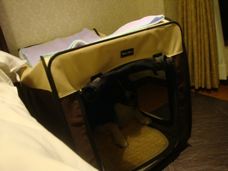hotel_room3.jpg