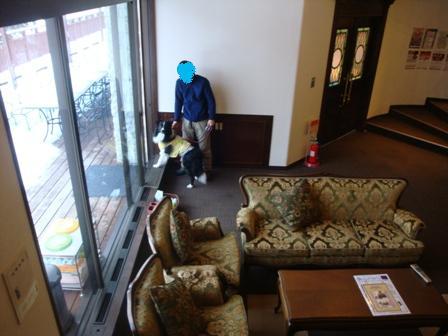 hoteldogrun01.jpg