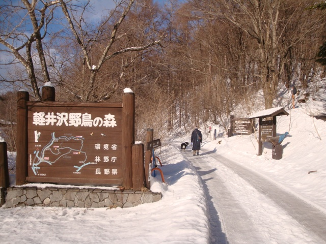 karuizawa20130220_10.jpg