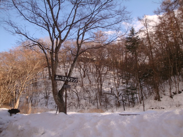 karuizawa20130220_24.jpg