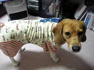 パジャマ横