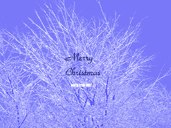 クリスマスカード1ブログ用