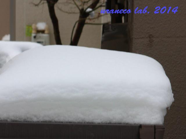 2月9日雪の朝