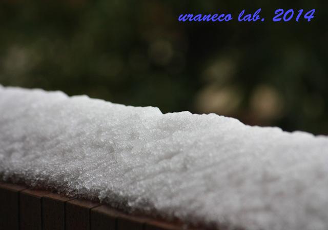 2月9日雪の朝7