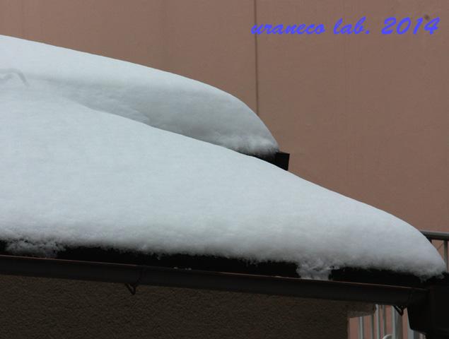 2月9日雪の朝3