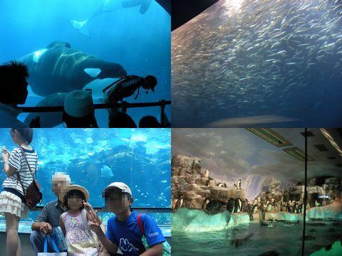 名古屋港水族館201208