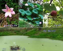 120908-3shikinzan3.jpg