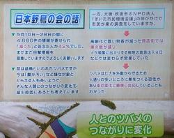 RIMG14303②ちちんぷいぷい23