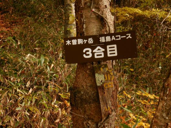 kisomi20141025-19_convert_20141105213627.jpg