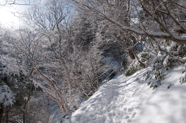 登山003