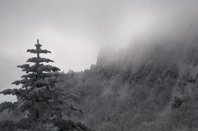 夜明峠2009