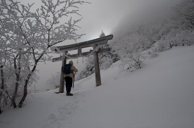 登山3003