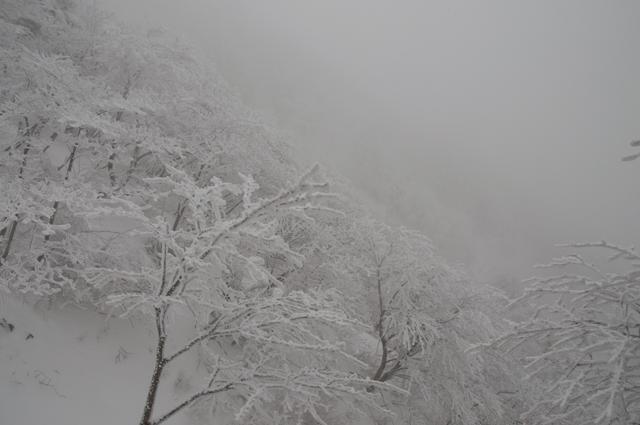登山3009