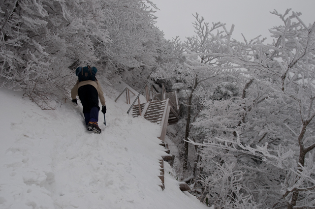 登山3007