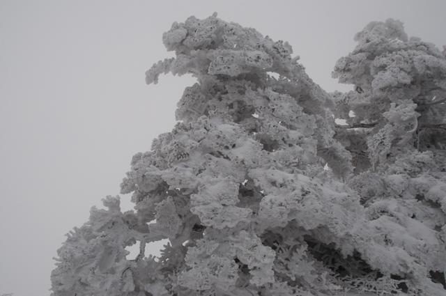 登山3014