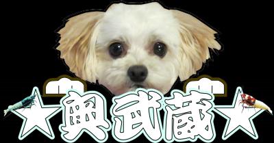 螂・豁ヲ阡オ縺輔s・狙convert_20130330211841